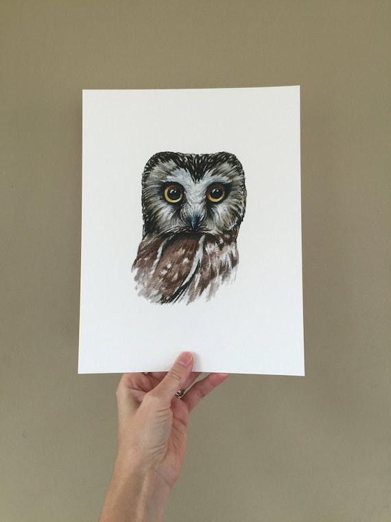 Northern Saw Whet Owl Print