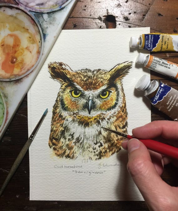 Great Horned Owl portrait/study - Original watercolour