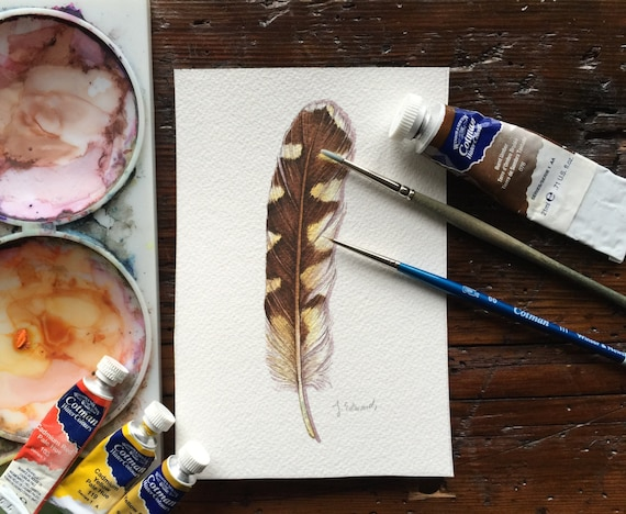 Burrowing Owl feather study - Original Watercolour