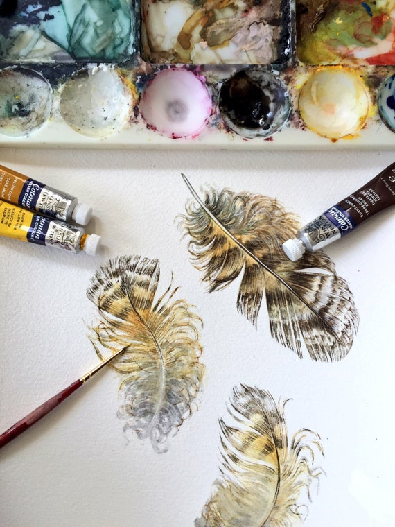 Great Horned Owl feathers - Original watercolour