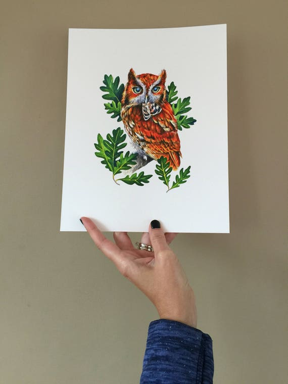 Eastern Screech Owl with Moth PRINT
