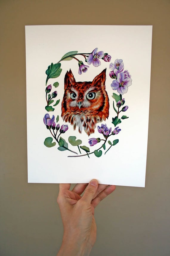 Owl, Eastern Red Screech Owl print - Archival quality print