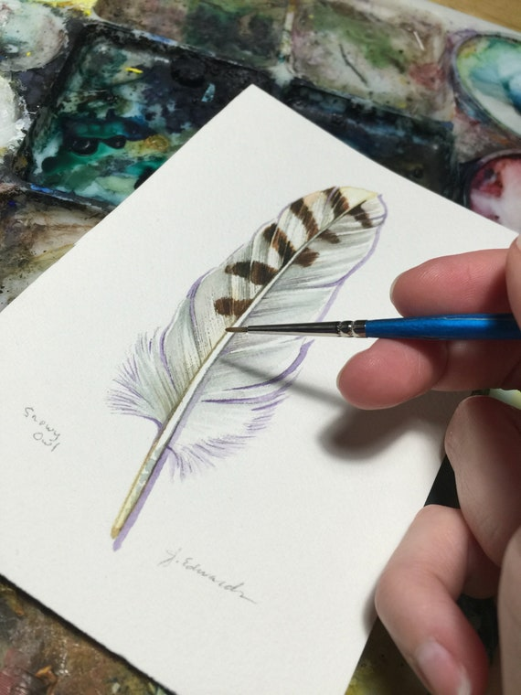 Snowy Owl Feather study - Original Watercolour painting