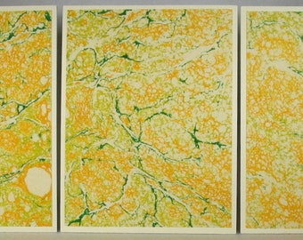 Note Cards SCS160 Set of Three Hand Marbled Silk Note Cards from Brooklyn Marbling