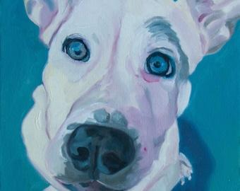 Dog Portrait Custom