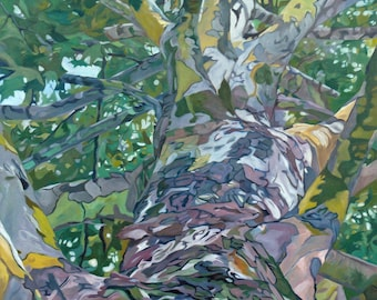Sycamore Tree Fine Art Oil Painting