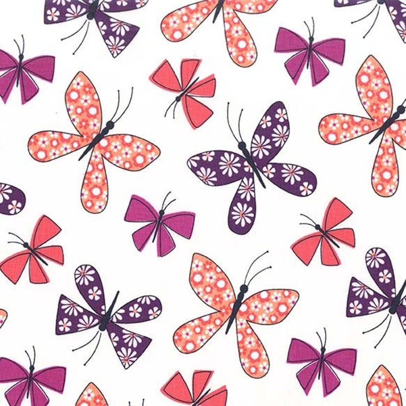 Chasing Butterflies in Berry from the Saturday Morning image 0