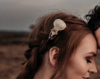 crow skull hair clip -  replica resin bird skull goth witch hair accessory
