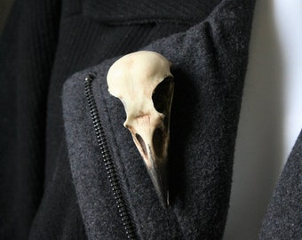 Crow skull pin - Replica resin bird skull brooch - goth Victorian taxidermy jewellery gift by Peculiar by Nature on Etsy
