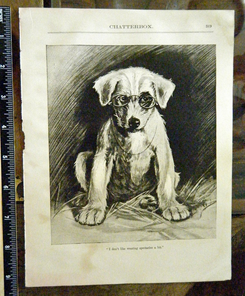 Gift for Dog Lover with Poem Antique Etching of Puppy Dog Wearing Glasses Original Victorian Era Etching Lithograph The Professor