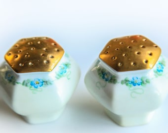 Vintage Porcelain Salt & Pepper Shakers White w/ Hand Painted Blue Flowers ~ Victorian / Edwardian Style Dining Table Accent Decor