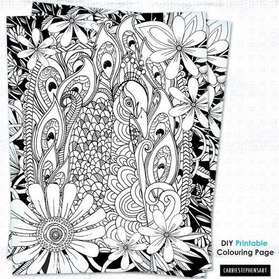 Adult Colouring Printable Coloring Page Peacock