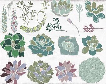 Succulent ClipArt, Hens & Chicks Digital Clip Art, Plant Digital Graphics, DIY Gardening illustration, Cactus Floral Wedding Invite Download