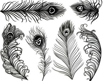 Peacock Feather Clip Art, Feather Silhouettes, Peacock Wedding Invitation Graphics, Photoshop Brush + PNG Digital Stamps, Bird