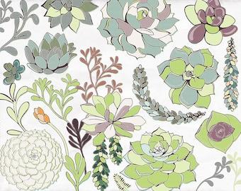 Succulent Flower Illustrations Clip Art, Hens & Chicks Floral ClipArt, Flower ClipArt, Commercial Use Graphics