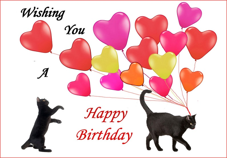 Cat Birthday Card Black Cats And Love Balloons Lover
