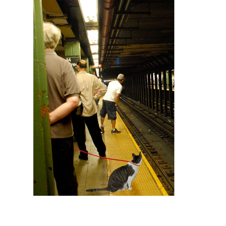 Cat Art New York City Print NYC Subway Giclee Art Print image 0