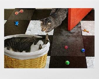 Handmade Cards, Cat Art, Cat Gifts, Blank Note Cards, Cat Lover Gift, Photo Notecards, Greeting Cards, Deborah Julian