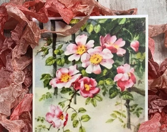 PRETTY IN PINK- crinkled seam binding, hand-dyed shades of light rose and pink, rayon seam binding