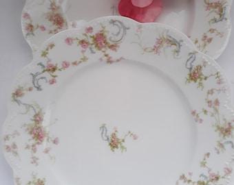 Vintage Dinner Plates Limoges French Pink Floral Set of Two