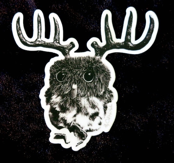 My Owl Has Antlers Round Sticker