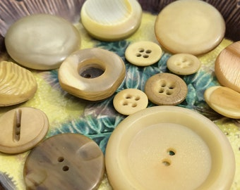 Beige Vintage Button Collection - Collectible Button Lot - Vintage Plastic Buttons - B176- 12 Buttons