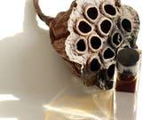 Lotus Pollinator -  Incandescent Floral Green Tea Amber - 100% Natural Perfume - 1 ml sample vial
