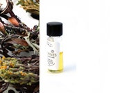 In The Pines - an enchanted coastal terrain of pitch pine, blooming heathers and bonfire coals - 1 ml tester mini vial