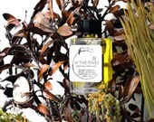 NEW - In The Pines - an enchanted coastal terrain of pitch pine and blooming heathers - 5 ml