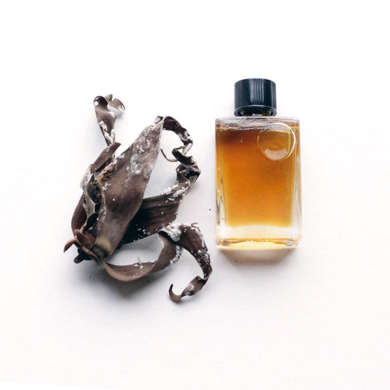 NEW  Ylang Lianas  a tropical woody floral thru nocturnal image 0