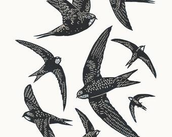 Swifts A3 linocut poster-print