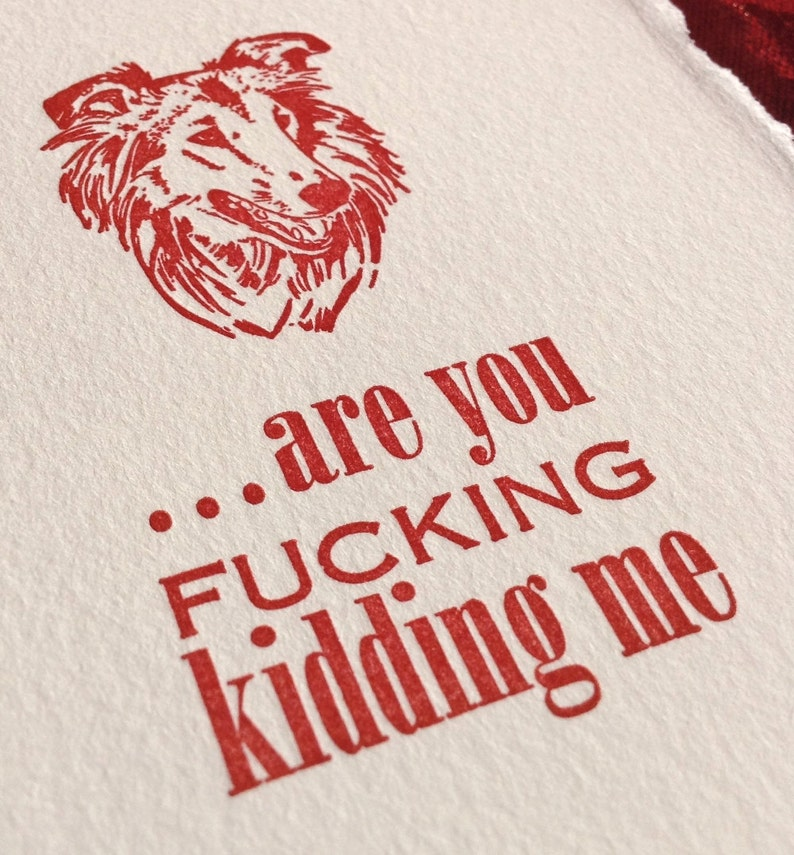 Funny Collie or Sheltie MATURE Language Are You F***ing Kidding Me? Offensive Letterpress Card Irritated Dog