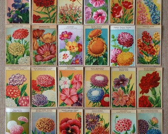 Botanical illustrations 24 Vintage French Flower Seed Packet Labels antique lithographs printed in the 1920s (Set 3)