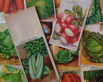 15 French VEGETABLE Seed Packets with Botanical Illustrations all different vintage lithographs for a collector or use in a rustic wedding
