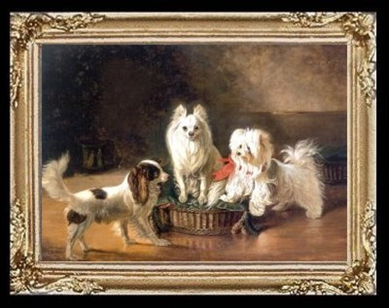 Japanese Chin Dog Dogs Miniature Dollhouse  Picture