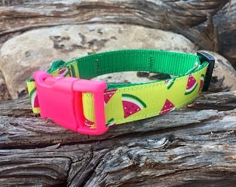 Dog Collar - Watermelons