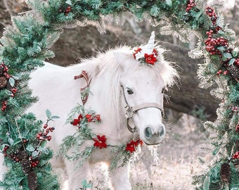 Christmas unicorn poinsettia gold mini horn and floral necklace for mini horse pony accessory photography prop