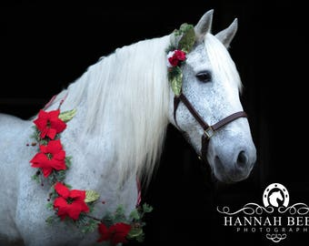 Christmas poinsettia pine holiday horse garland necklace flowers halter bridle clip