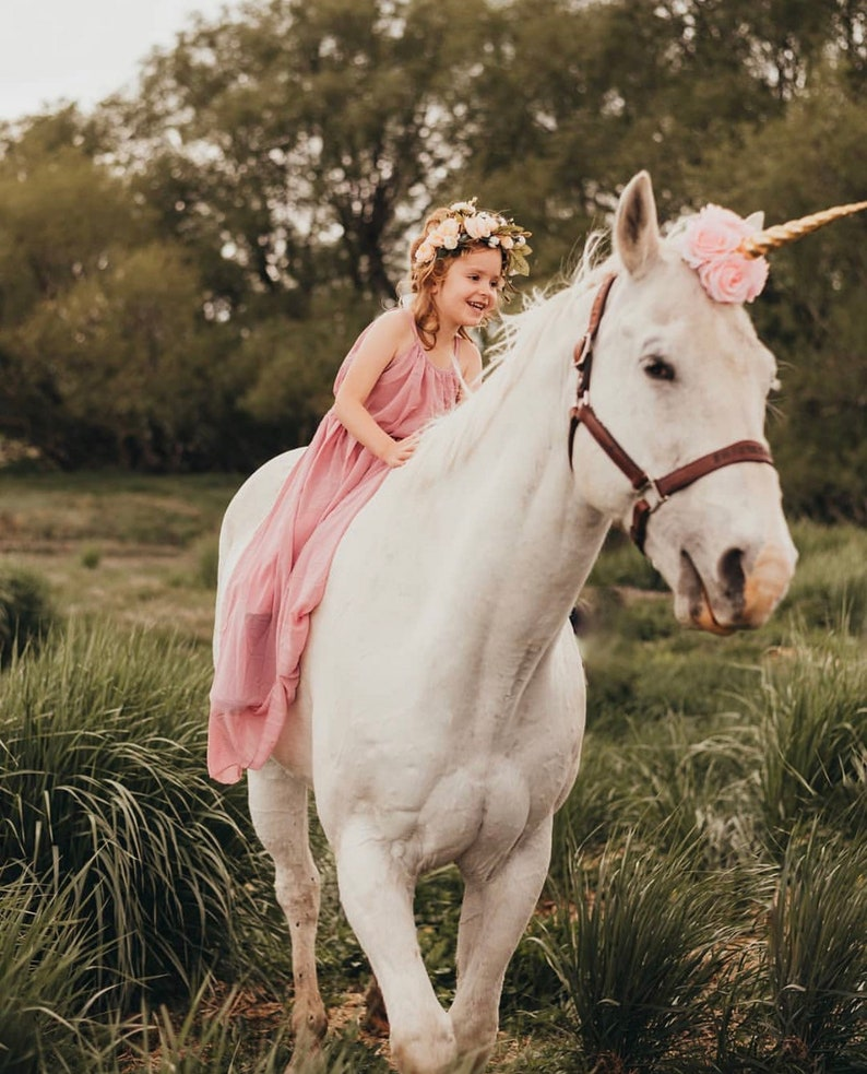 ready to ship Unicorn horn pink gold accessory rocking horse carousel horse pony clip photography prop