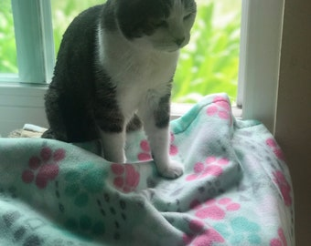 Fleece pet blanket, mint green, with pink and green paws, and various shapes (small/medium) 27x33