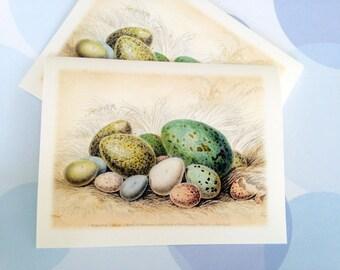 Easter Card, Easter Egg, Vintage Easter Card