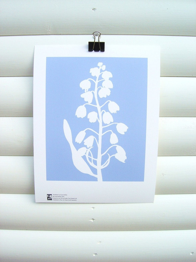 Nature Art Print 10x8  Soft Blue Fritillary  Modern image 0