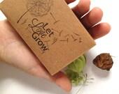 Unique Summer Wedding Favor Seed Kit. Custom Heart seed envelopes. Set of 30. Let Love Grow. Eco Friendly Wedding