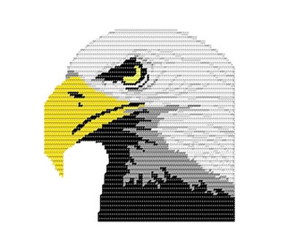 Plastic Canvas Majestic Eagle Wall Hanging...PDF Pattern...Instant Download