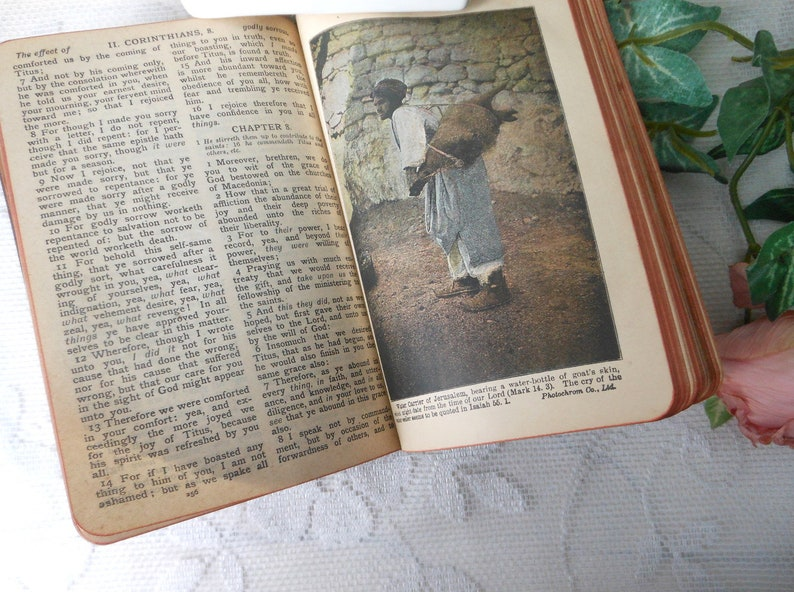 Vintage Red Letter New Testament Bible Illustrated John C Winston Co  Gold  Page Edges at Quilted Nest