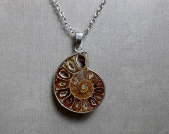 Ammonite Fossil Shell Necklace - Ammonite Pendant - No. 1