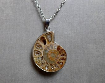 Ammonite Fossil Shell Necklace - Ammonite Pendant - No. 4