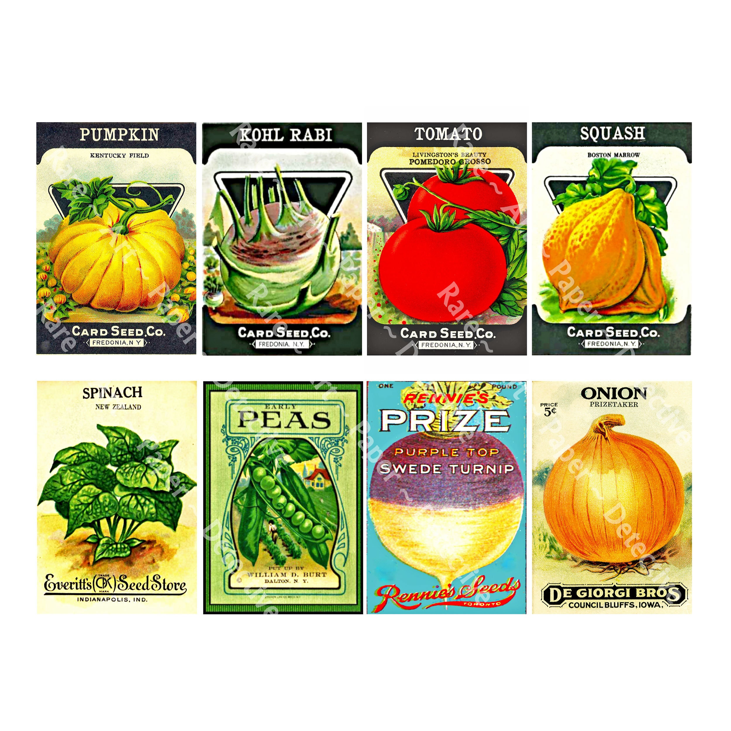Vintage Label Art 1896 Seed Pack Art Gardening Journal 5 x 7 Wall Art Garden Shed Decor Vegetable Seed Packet Catalog Print 6b
