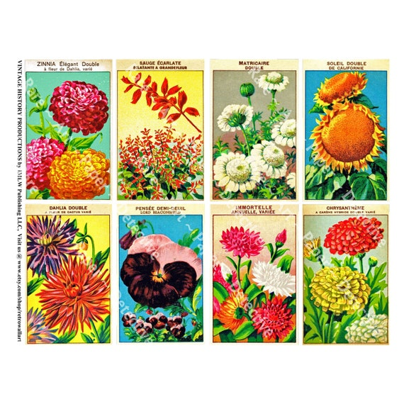 Victorian Ephemera Collage Antique French Seed Packs Garden Decoration 607 Vintage Vegetable Seed Packets Printed Sheet Gardening Shed