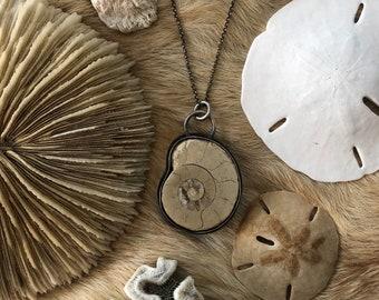 Rare white ammonite fossil sterling silver pendent necklace 925 tan beige distressed stone rock organic nature nautical ocean sea beach